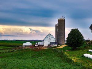 Mega Farms in the UK