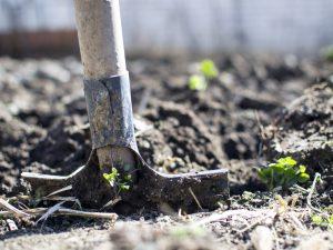 Hobby Farm Health and Safety